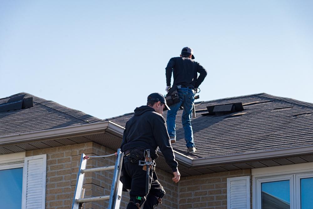 Roof Maintenance: DIY vs. Hiring a Professional