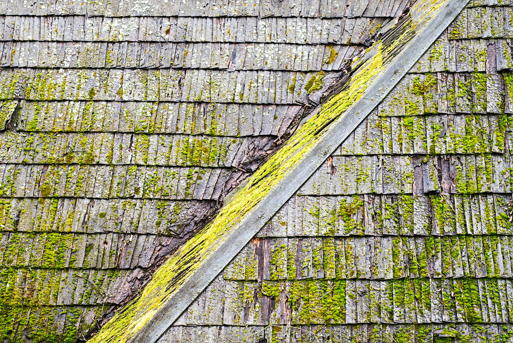 Roof Cleaning Solutions: How Often Should You Clean Your Conroe Roof?