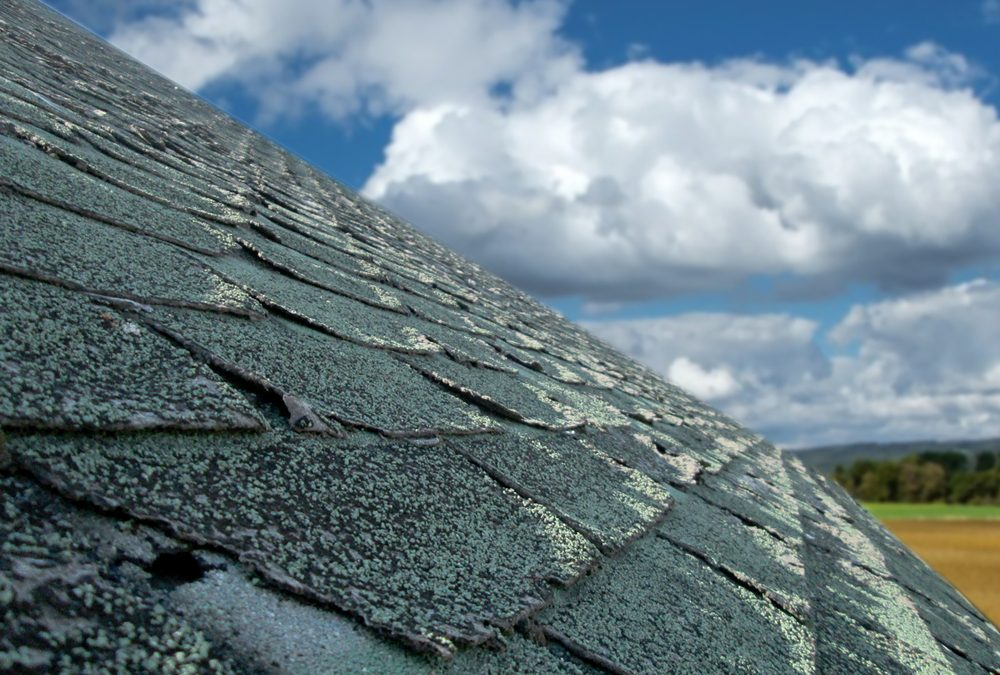 The Telltale Signs You Need a New Roof