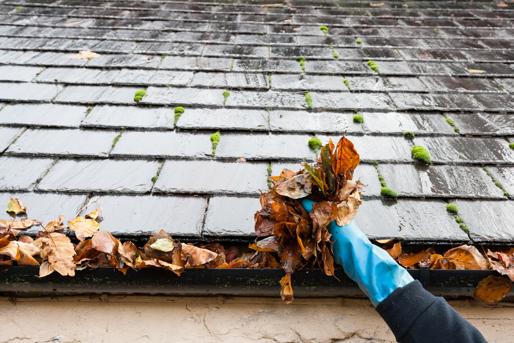 3 Roof Cleaning Tips to Use Year-Round