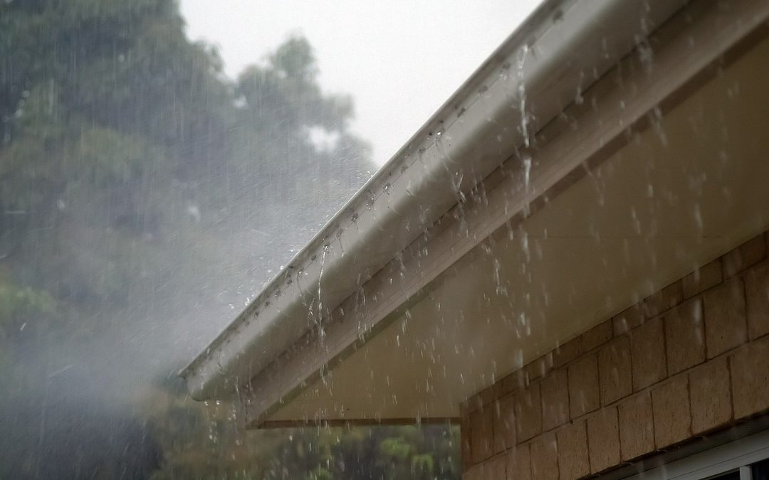 Why Choose Professional Gutter Cleaning?