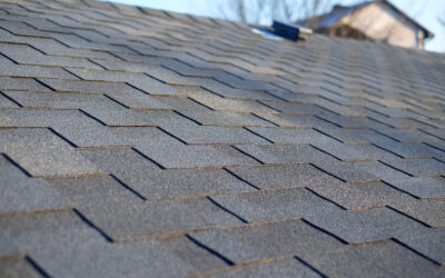 Curb Appeal Goes From the Ground Up! Is Your Roof Up to Par?