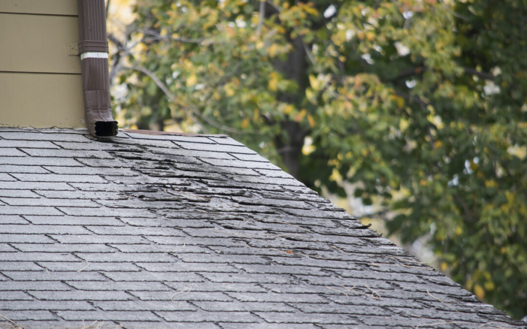 Good Roof Maintenance Today Mean Less Hassle and Expense Tomorrow!