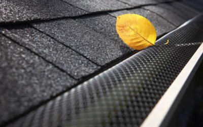 Clearing out the gutters is an essential part of regular roof maintenance! You'll be glad you did!